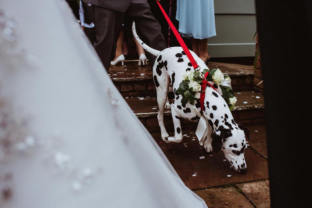 Abbeywood-Estate-Wedding-Photography 042